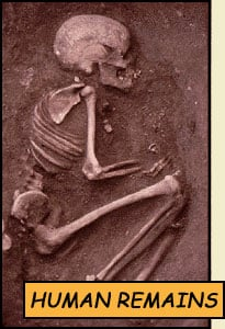 199 Atalh 246 Y 252 K Human Remains