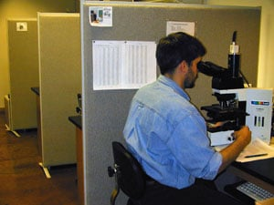 researcher looking into a microscope in lab