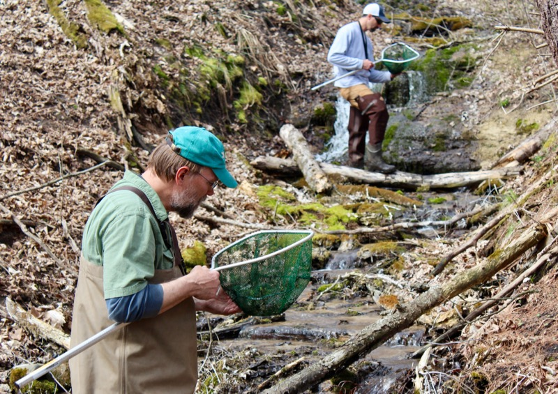 Curt Oien and Mitch Haag hunt dragonfly nymphs in a spring creek on the bluffs at Pine Needles.