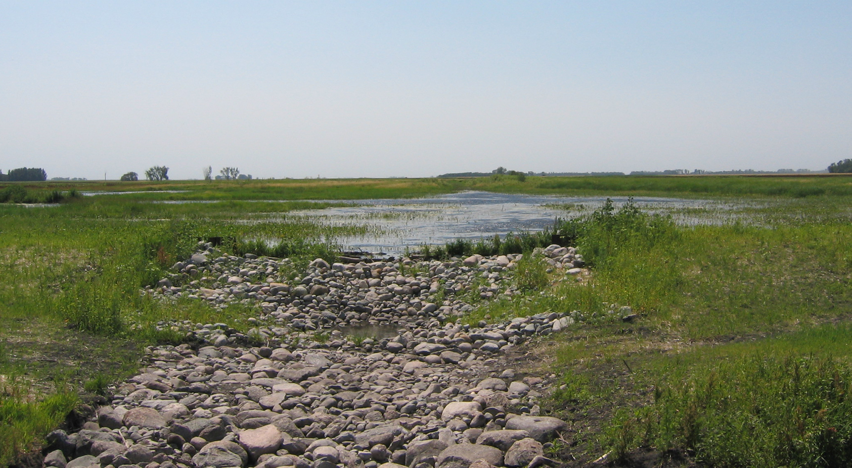 Wetland recreation to hold back water on the landscape before reaching rivers.