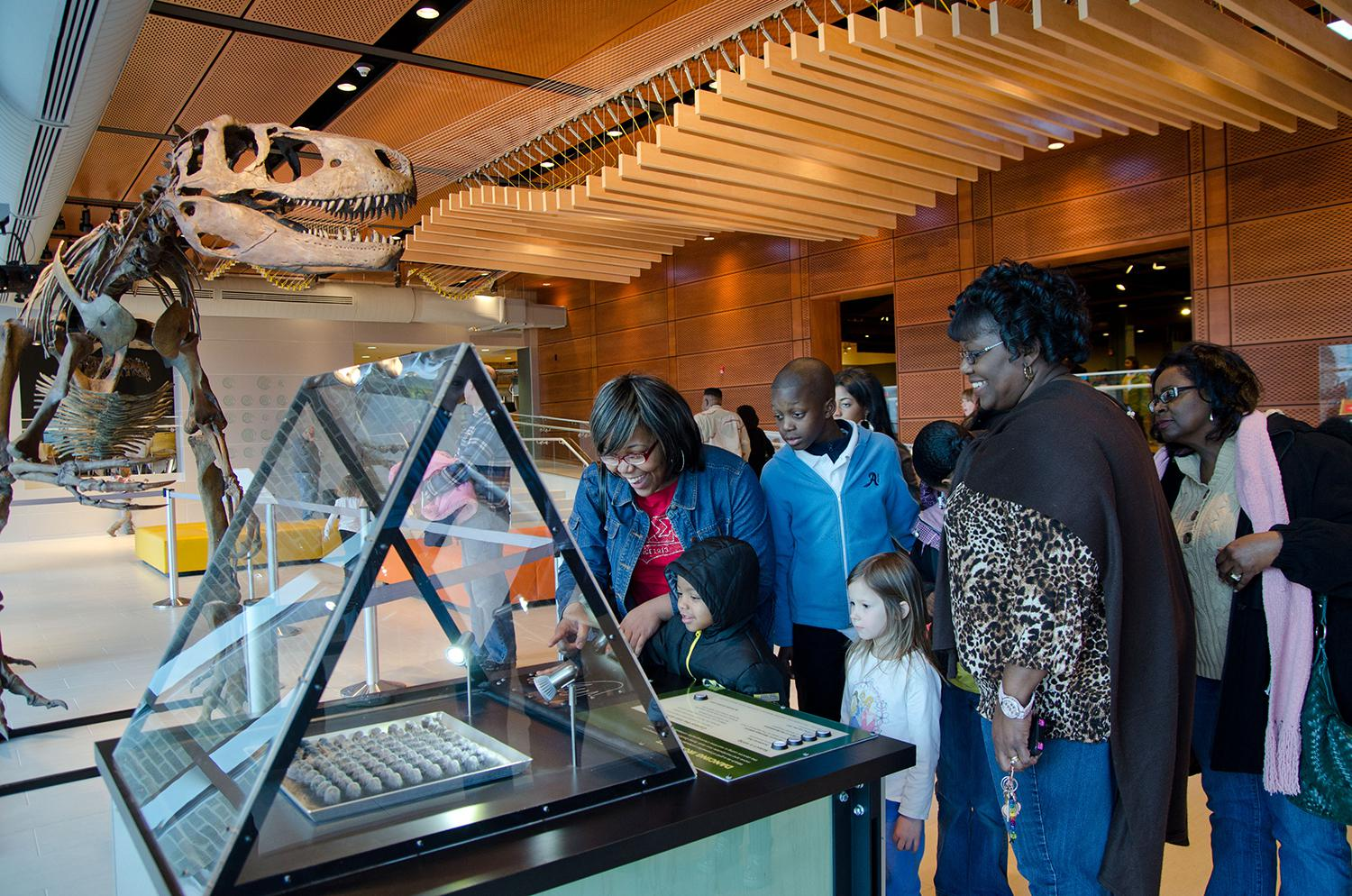 Image result for museum of discovery