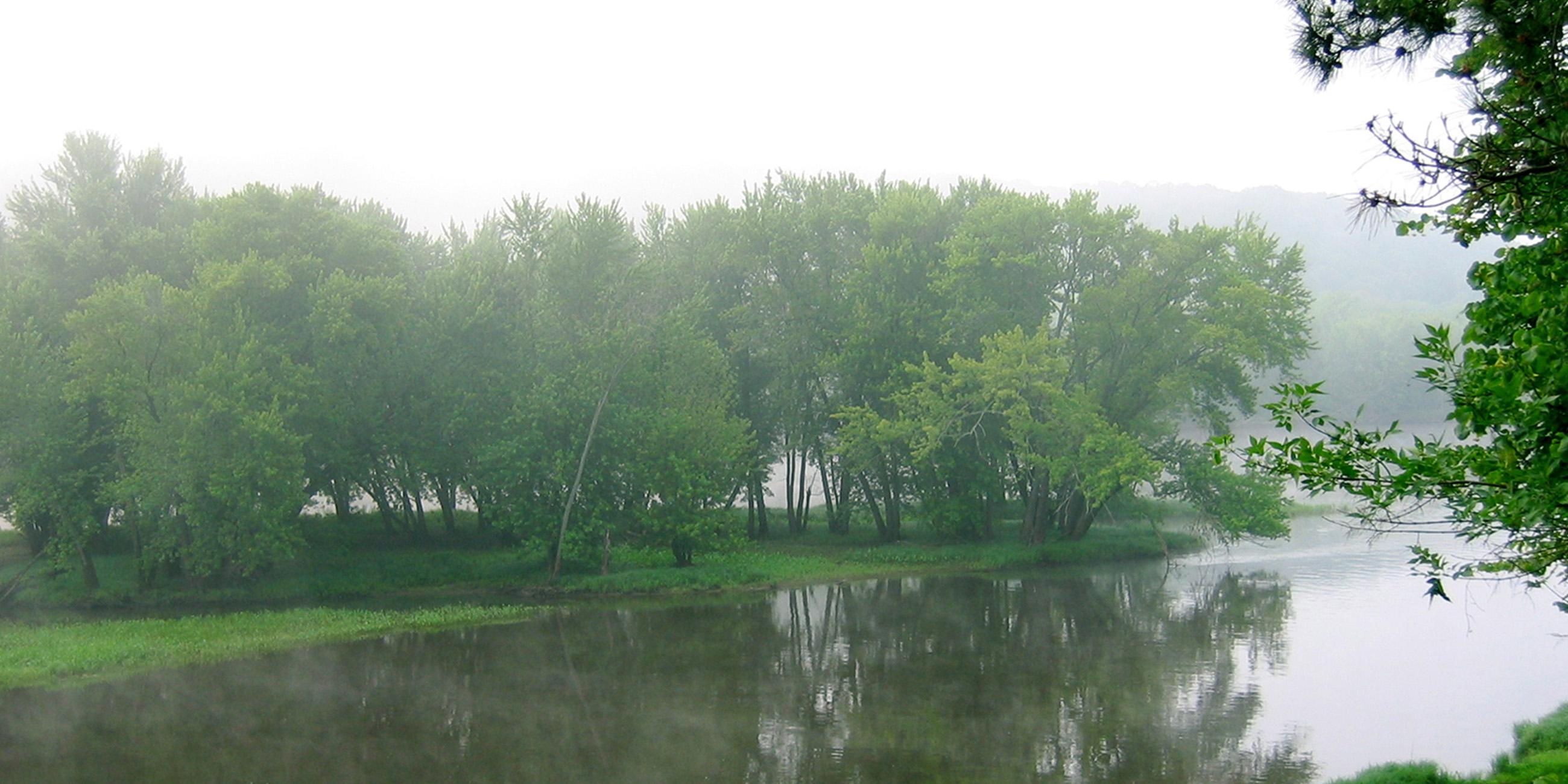 River with Green Trees