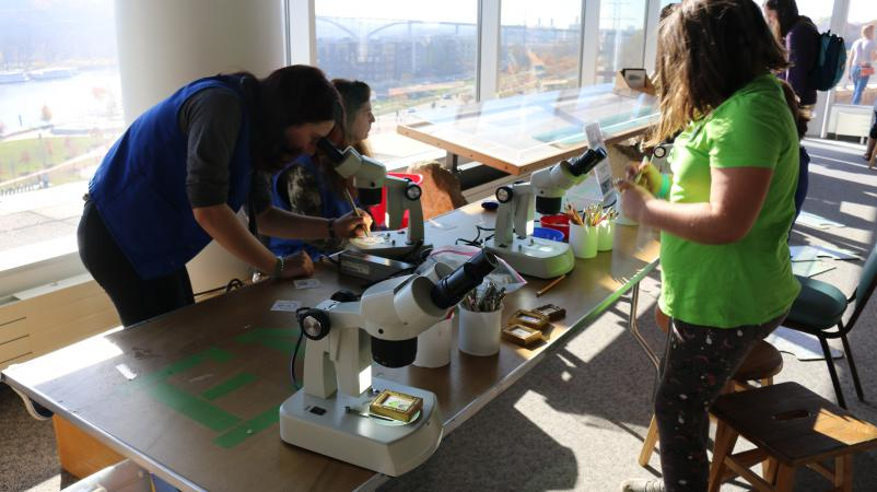 Play. Tinker. Make. volunteer and visitors creating tiny drawings under a stereoscope.