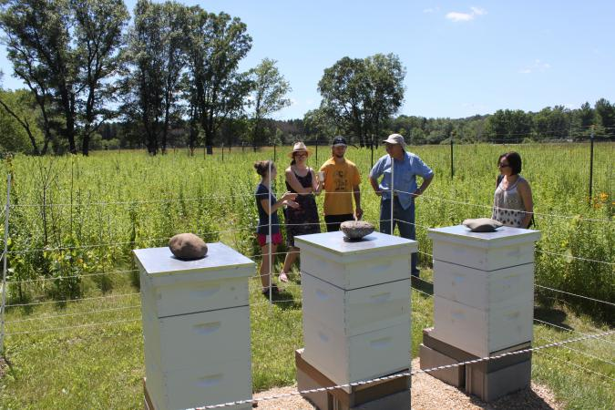 Guests learn about beekeeping