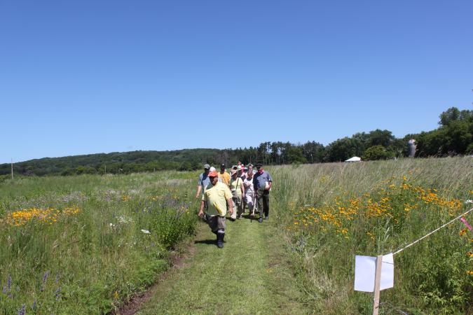 Prairie and Pollinator Event – Prairie Tour