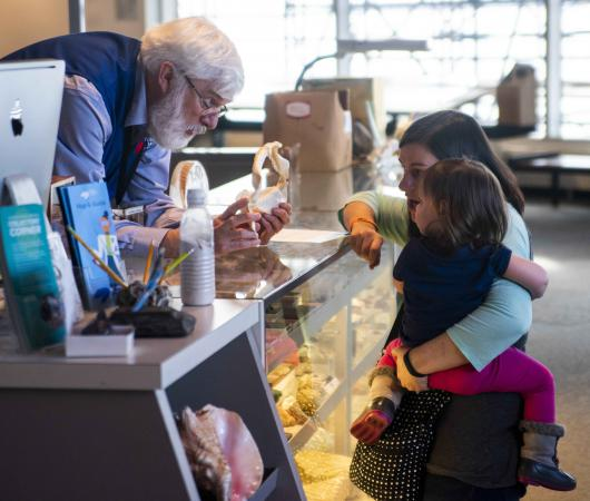 A young girl is showed an item from a staff member behind the Collectors Corner desk.